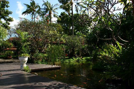 Hotel Santika Premiere Beach Resort Bali: Jardins, poissons