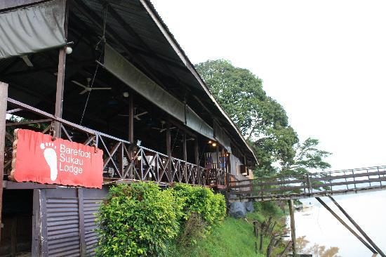 Barefoot Sukau Lodge: the front over the river