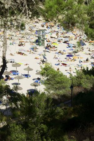 Hotel Cala Santanyi & Apartamentos: Badebucht und Strand tagsüber