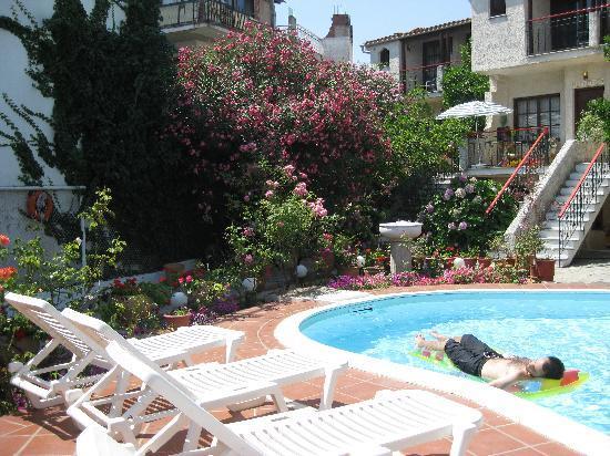 Hotel Kipos: Kipos pool