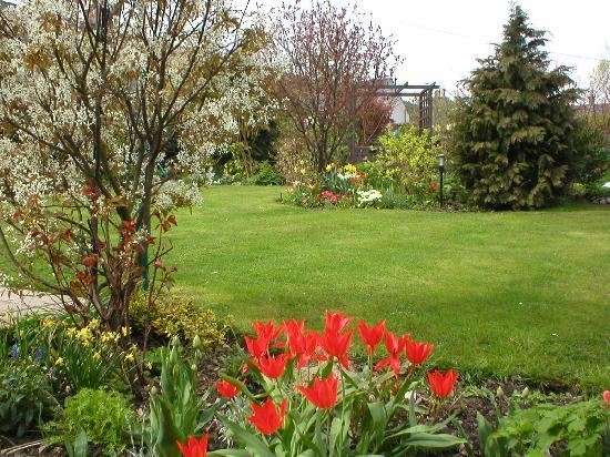 Dufftown, UK: garden in Spring