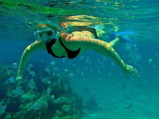 Xanadu Island Resort: Snorkeling with the fishies