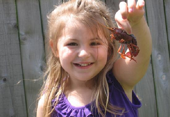 Beaumont has two distinct cultures: TX & Louisiana so Cajun food such as crawfish are a local fa