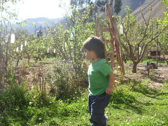 El Huerto Paraiso Sacred Valley Lodge照片