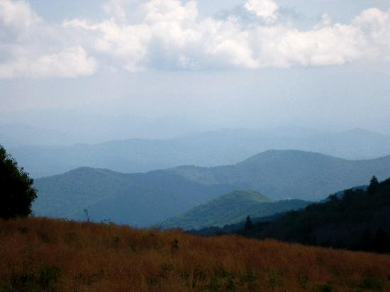 Roan Mountain State Park: view from Roan Bald
