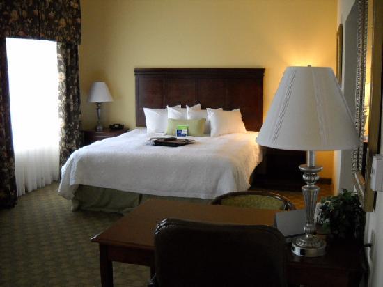 Hampton Inn & Suites Lubbock Southwest : King room