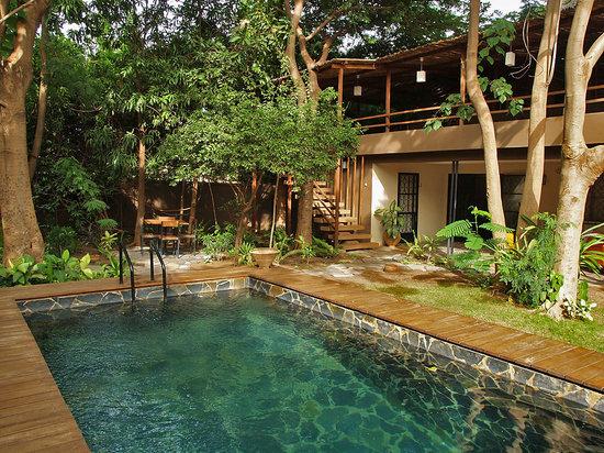 Comme Chez Soi: The garden and pool - Le jardin et la piscine