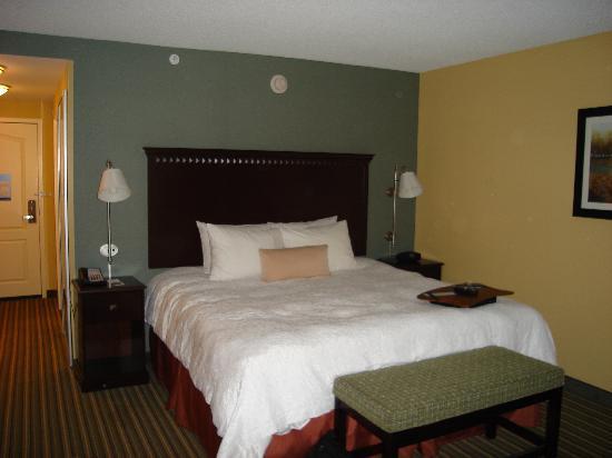 Hampton Inn & Suites Mt. Vernon/Belvoir-Alexandria South: picture of the room