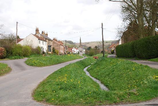 Beckside Cottage: Garden