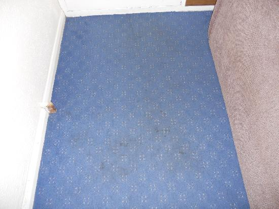 Hemsby, UK: DIRTY CARPET