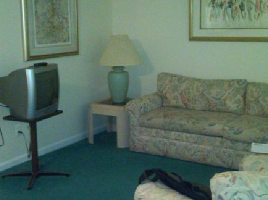 Duke Tower Suites and Condominiums: Living Area