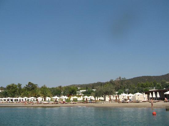Thermisia, Greece: HYDRA DALLA CANOA