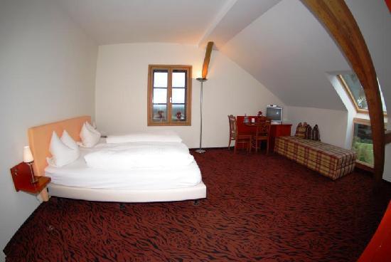 Gasthof-Hotel Zur Schonen Aussicht