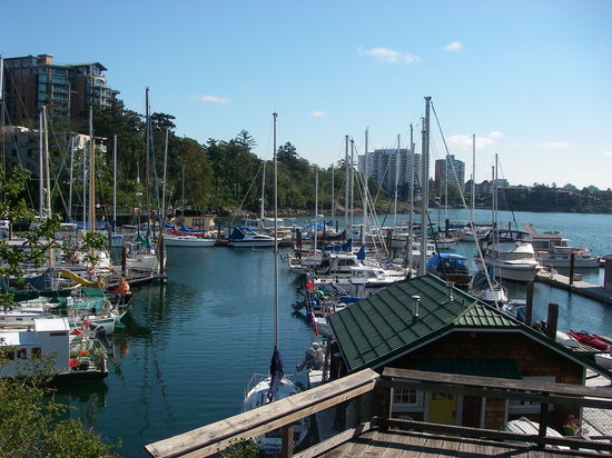 Victoria Waterfront Tours : Enjoy the Marina!
