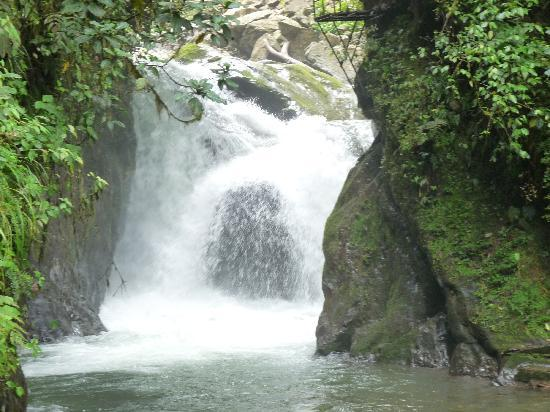 Миндо, Эквадор: Nambillo Waterfall in Mindo