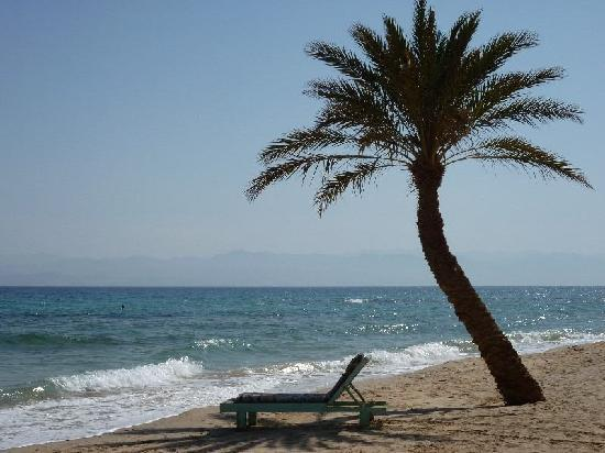 South Sinai, Egypt: Strand