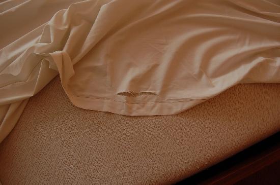 Aparthotel Wellington: biancheria da letto.