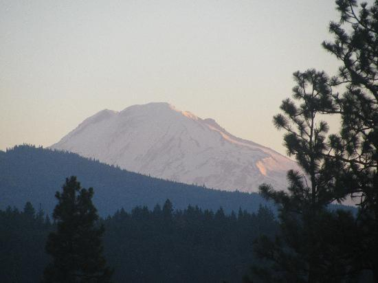 Sunset Motel Hood River: View of Mt. Adams in morning glow