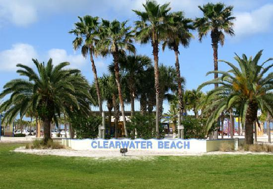 Beach Shanty Cafe: Clearwater Beach is right across the street.