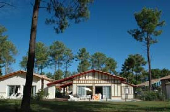 Residence Odalys Les Greens du Bassin: Arrière de la villa