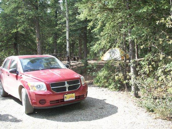 Riley Creek: Large campsite