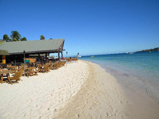Plantation Island Resort: How good is this!