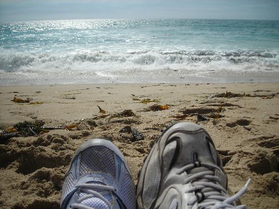 هوليداي إن إكسبريس هوتل آند سويتس مارينا - ستيت بيتش إريا: The beach near the hotel - awesome!