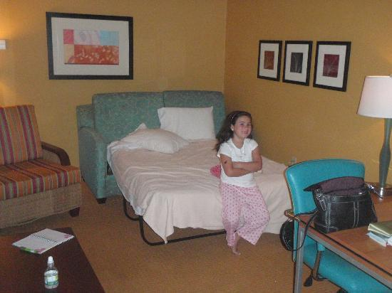 Springhill Suites Virginia Beach Oceanfront Pull Out Couch