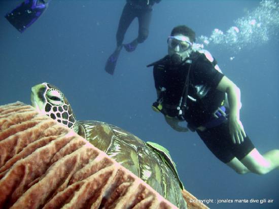 Manta dive gili air resort gili islands reviews - Manta dive gili air ...