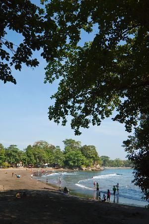 JavaCove Beach Hotel : Batu Karas Bay