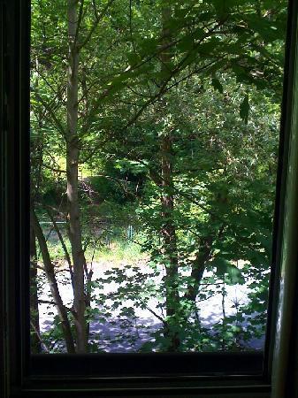 Hotel Atrium: Blick aus dem Fenster in den Wald
