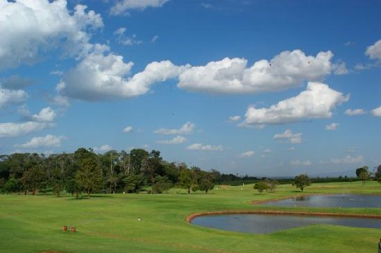 Windsor Golf Hotel and Country Club : the golf course