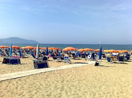 Cerullo's Paestum: altro scorcio della spiaggia
