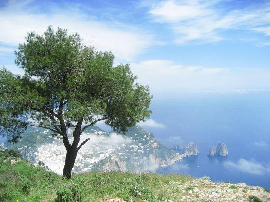 Anacapri, İtalya: Beautiful views