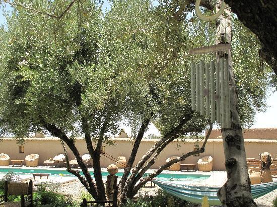 carillon dans le jardin picture of les jardins de skoura skoura m 39 daz tripadvisor. Black Bedroom Furniture Sets. Home Design Ideas