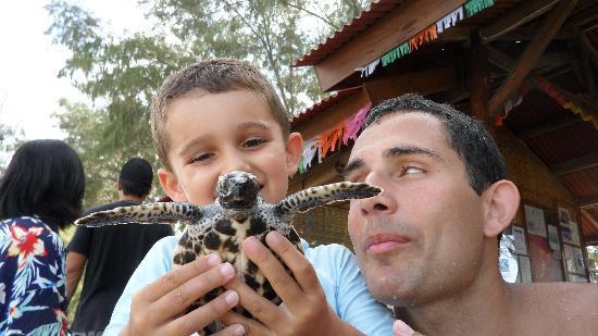Villa Nautilus: Mattéo a parrainé Mathis la tortue lors de 10 cérémonie pour la sauvegarde des tortues !