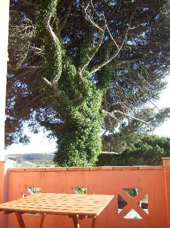 Sabugo, โปรตุเกส: Aussicht von Terrasse