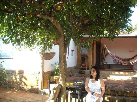 patio interior del carambolo