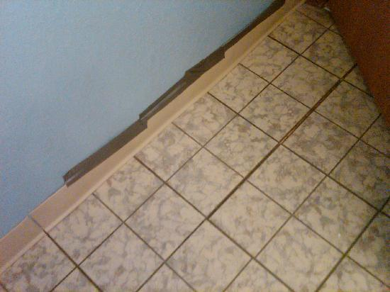 Waters Edge Resort: Duct tape on coving in back bathroom...gap in linoleum