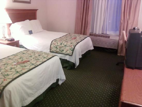 Fairfield Inn & Suites Boone: Room