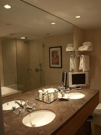 Hotel Teatro : Bathroom, well appointed in stone