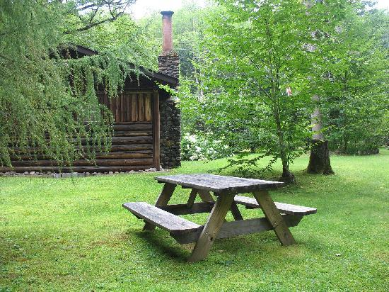 Rustic Log Cabins: The back of the cabin with picnic table.