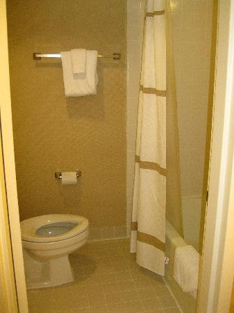 Albany Marriott: Tiny Bathroom