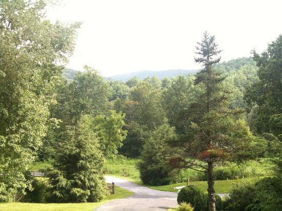 Roan Mountain Bed and Breakfast: View from the front porch