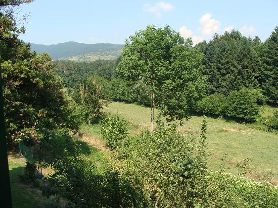 Fattoria di Marena: View from back window