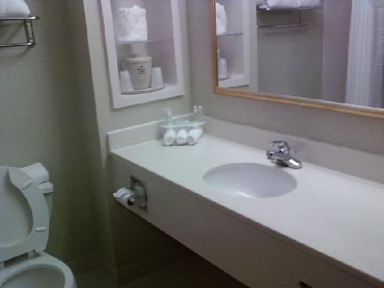 Holiday Inn Express Hotel and Suites Chattanooga-Lookout Mountain: bathroom