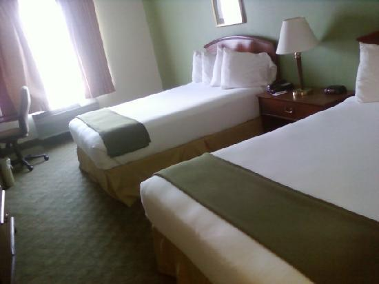 Holiday Inn Express Hotel and Suites Chattanooga-Lookout Mountain: room