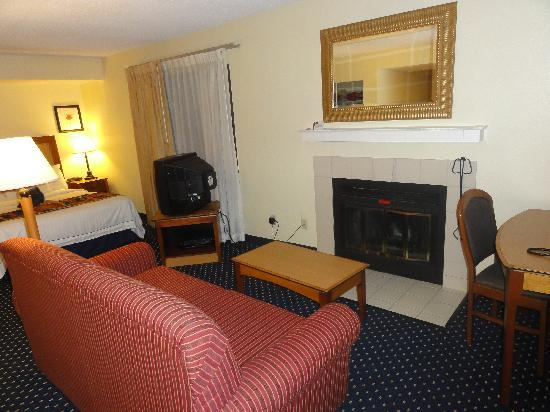Residence Inn Sunnyvale Silicon Valley II: The Sofa and the fire place