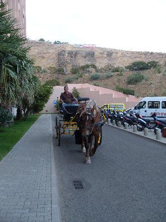 Restaurante Equestre: proprietario con il carretto
