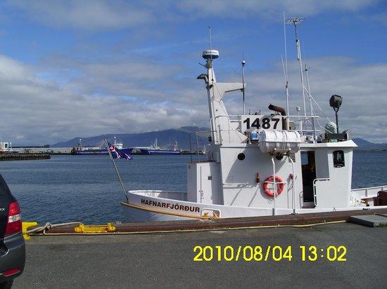 Sjosigling : bateau dns esprit islandais